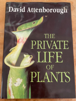 B36 The Private Life Of Plants By David Attenborough